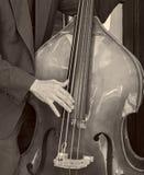 Bass Fiddle Imagens de Stock