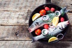 Bass-Fische in der Wanne Lizenzfreie Stockbilder