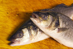 Bass fish. Two bass fish after they have been prepared for cooking Stock Photo