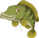 Bass fish cartoon Stock Photo