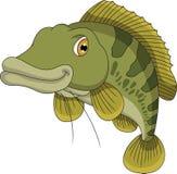 Bass fish cartoon Stock Photo