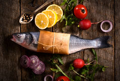 Bass fish Stock Photography