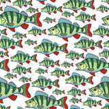 Bass fish repeat pattern. Seamless pattern of the bass fish group Stock Images