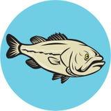 Bass Fish Side Circle Cartoon de large ouverture Photo stock