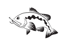 Bass fish symbol on white background,Vector. Royalty Free Stock Photography