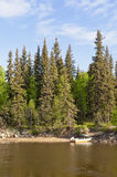 Bass Fishing Boat. In a lake with Evergreen trees and a blue sky royalty free stock images