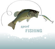 Bass fishing. Jumping fish with bait, vector illustration Stock Photo