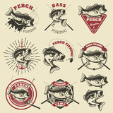 Bass fishing labels. Perch fish. Emblems templates for fishing c. Lub. Vector illustration Stock Photography