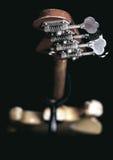 Bass guitar Stock Image
