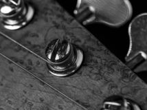 Bass guitar headstock and tuning peg closeup. Black and white photo of a bass guitar headstock and tuning pegs stock images