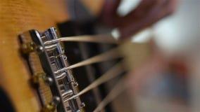 Bass Guitarist Plays Music archivi video