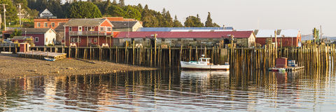 Bass Harbor Docks Panorama Royaltyfria Bilder
