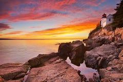Bass Harbor Head Lighthouse Acadia NP, Maine, USA på solnedgången Royaltyfri Bild