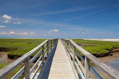 Bass Hole Boardwalk, Yarmouth, Maine, U.S.A. fotografie stock libere da diritti