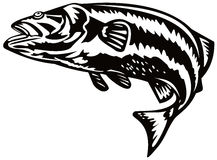 Bass jumping. Vector art on fish and fishing industry Royalty Free Stock Photos