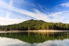 Bass lake. And the forest view Royalty Free Stock Image