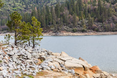 Bass Lake II. South side of Bass Lake in the Sierra National Park near Yosemite Royalty Free Stock Photography