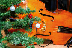 Bass lies under the tree Christmas decorations Royalty Free Stock Image