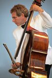 Bass player in concert