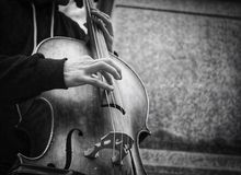 Bass player street musician busker Royalty Free Stock Photography