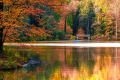Bass Pond In Autumn Arkivbild