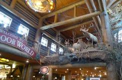 Bass Pro Shops, taxidermia de Springfield, Missouri fotos de stock royalty free
