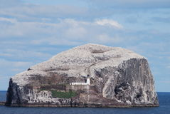 Bass Rock Royalty Free Stock Images