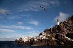 Bass Rock Royalty Free Stock Image
