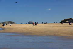 Bass Rock and Beach, Dirleton, Scotland. Families on the beach at Dirleton, Scotland, with a view of Bass Rock in the background, a flying kite, and a seagull Stock Image