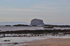 The Bass Rock stock image