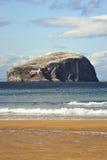 Bass rock and beach, Scotland Stock Photography