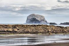 Bass Rock i firthen av framåt arkivbild