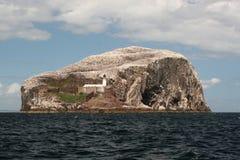 Bass Rock Stock Image
