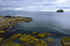 Bass Rock, Scotland Royalty Free Stock Image