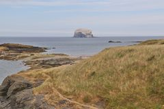 Bass Rock royalty free stock photography