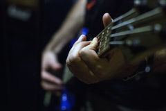 Bass Strings Stock Photo