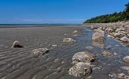 Bassa marea bianca della roccia Fotografia Stock Libera da Diritti