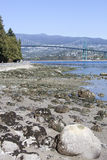 Bassa marea del porto di Vancouver Immagini Stock