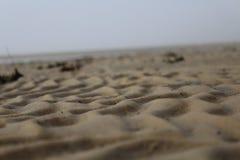 Bassa marea del primo piano Fotografie Stock