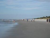 Bassa marea su Hilton Head Island, Carolina del Sud Immagine Stock Libera da Diritti