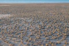 Bassa marea sulla spiaggia Fotografia Stock