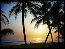 Bassam Beach ivory coast. Sunset Beach coconut ivory coast stock image