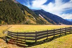 Basses barrières en bois d'agriculteurs Image libre de droits