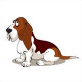 Basset Hond Stock Illustratie