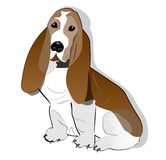 Basset hond die op witte achtergrond trekken royalty-vrije illustratie