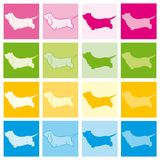 Basset Hound Color. Basset Hound 16 dogs in 4 different shades Royalty Free Stock Photos