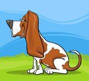 Basset hound dog cartoon illustration Royalty Free Stock Images