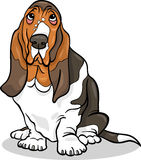 Basset hound dog cartoon illustration Stock Photography
