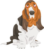 Basset hound dog cartoon illustration Royalty Free Stock Photo