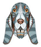 Basset hound head zentangle stylized, vector, illustration, free Royalty Free Stock Photo